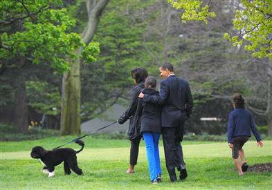 Obama and Bo, the first dog
